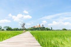 Piękny widok drewniany most z zieleni niebieskim niebem i polem Widok irlandczyka pole Unmilled ryż Thai gospodarstwo rolne Tapet Obrazy Stock