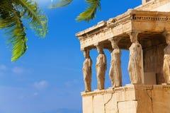 Piękny widok Erechtheion z palmą w Ateny Obraz Royalty Free