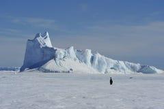 Piękny widok góry lodowa Śnieżny wzgórze Antarctica Zdjęcie Stock