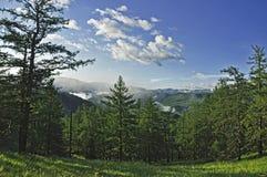 Piękny widok góry zakrywać z lasem Obrazy Royalty Free