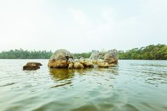 Piękny widok Jeziorny Koggala obraz royalty free