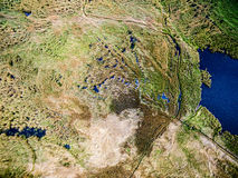 Piękny widok jezioro przerastający z płochami fotografia royalty free