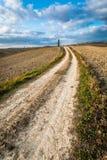 Piękny widok kolorów żółtych pola przy zmierzchem w Tuscany Zdjęcia Stock