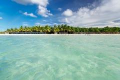Piękny widok kubańczyka Cayo Coco palmy plaża i ocean na pogodnym wspaniałym dniu spokojny, turkusowy, Obrazy Stock