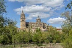 Piękny widok Nowa katedra Salamanca, Castilla y Leo fotografia stock