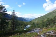 Piękny widok podczas podwyżki w Norwegia blisko do Kinsarvik zdjęcie royalty free