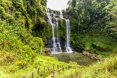 Piękny widok siklawa krajobraz Mała siklawa w głębokim - zielona lasowa sceneria Zdjęcia Stock
