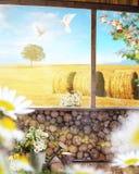 Piękny widok z ścianą, gołąbką i drzewem drewnianymi, Obrazy Royalty Free