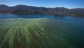 Piękny widok z lotu ptaka Kaneohe zatoki Sandbar Oahu, Hawaje zdjęcie royalty free