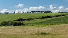 Piękny widok zieleni łąki przy zmierzchem w Tuscany i pola fotografia royalty free