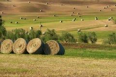 Piękny wieś krajobraz blisko Siena w Tuscany, Włochy Round słoma bel siana piłki w zbierającym niebieskim niebie i polach Obrazy Royalty Free