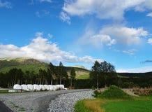 Piękny wiejski krajobraz Norwegia zdjęcie stock