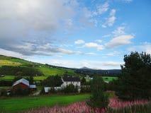 Piękny wiejski krajobraz Norwegia zdjęcie royalty free