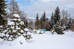 Piękny wintergarden zakrywający śniegiem zdjęcia stock