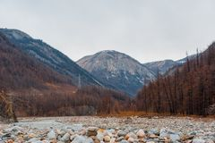 Piękny wiosna krajobraz Zachodnie Sayan góry Obraz Stock
