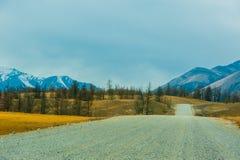 Piękny wiosna krajobraz Zachodnie Sayan góry Obrazy Royalty Free