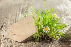 Piękny wiosna znak, etykietka z trawą lub zdjęcie stock