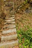 Piękny wizerunek kamienni schodki z metal bramą fotografia royalty free
