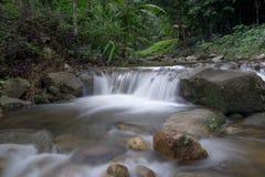 Piękny wodny spadek w głębokim lesie Obrazy Royalty Free