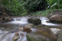 Piękny wodny spadek w głębokim lesie fotografia stock