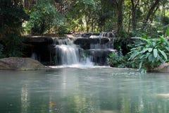 Piękny wodny spadek w głębokim lesie obrazy stock