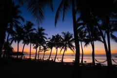 Piękny wschód słońca na Kokosowego drzewa Wykładającej plaży, Panglao Zdjęcie Royalty Free