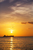 Piękny wschód słońca nad horyzontem Fotografia Stock