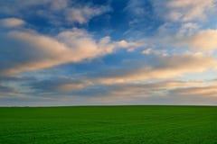 Piękny wschód słońca nad zielonym polem Fotografia Stock