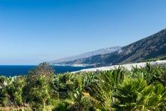 piękny wybrzeże la palma Fotografia Stock