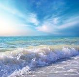 Piękny wybrzeże plaża przy dniem. Natura skład. Zdjęcie Royalty Free