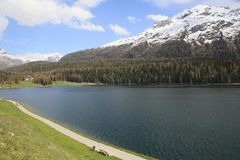 Piękny wysokogórski krajobraz przy świętym Moritz, Szwajcaria zdjęcie royalty free
