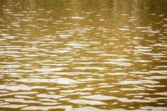 Piękny wzór odbija światło słoneczne woda Strzał aqua wciąż wody powierzchnia z czochrami i wziernikowymi głównymi atrakcjami pus obraz stock