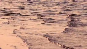 Piękny złoty zmierzch na rzece z falami Poj?cie natura, wakacje, relaksuje mi?kkie ogniska, zbiory wideo