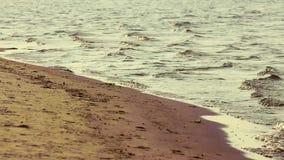 Piękny złoty zmierzch na rzece z falami Poj?cie natura, wakacje, relaksuje mi?kkie ogniska, zbiory