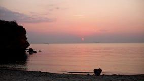 Piękny złoty zmierzchu wschód słońca na morzu, uzupełnia spokój, latający seagulls zdjęcie wideo