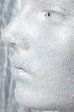 Piękny, zadziwiający portret kobieta, Zdjęcia Royalty Free