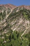 Piękny zbocze góry Obraz Royalty Free