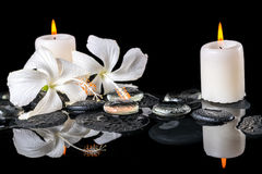 Piękny zdroju wciąż życie delikatny biały poślubnik, zen kamienie Zdjęcie Stock