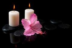 Piękny zdroju wciąż życie delikatny różowy poślubnik, świeczki fotografia stock