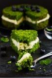 Piękny zieleń tort z szpinakiem Obrazy Royalty Free