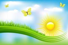 piękny zieleni krajobrazu wektor Zdjęcia Stock