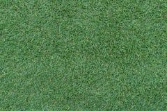 Piękny zielonej trawy tło, tekstura, wzór zdjęcia royalty free