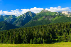 Piękny zielony lato krajobraz Tatrzańskie góry w Zdiar wiosce, Sistani Zdjęcia Stock