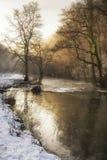 Piękny zima śnieg zakrywał wieś krajobraz rzeczny flo Obraz Stock