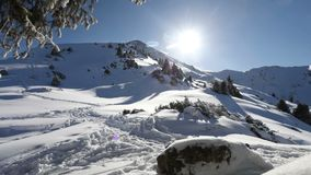 Piękny zima czasu upływ zbiory wideo