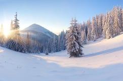 Piękny zima krajobraz Zdjęcie Royalty Free