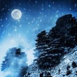 Piękny zima krajobraz ilustracji