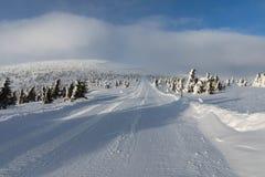 Piękny zima krajobraz Krkonos na słonecznym dniu Zim granie Krkonose góry Drzewa zakrywający z mrozem Obrazy Royalty Free