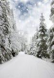 Piękny zima krajobraz z śniegi zakrywającymi drzewami Fotografia Royalty Free