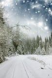Piękny zima krajobraz z śniegi zakrywającymi drzewami Zdjęcie Stock